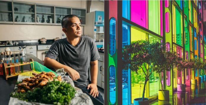 Energia rinnovabile dagli scarti delle verdure
