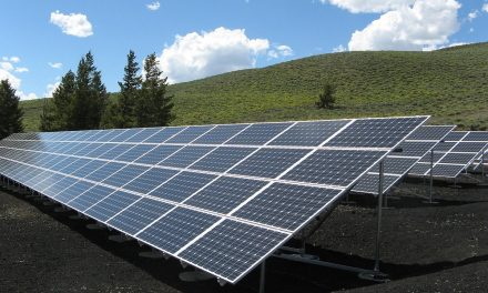 Energie Rinnovabili: 2020 da Record