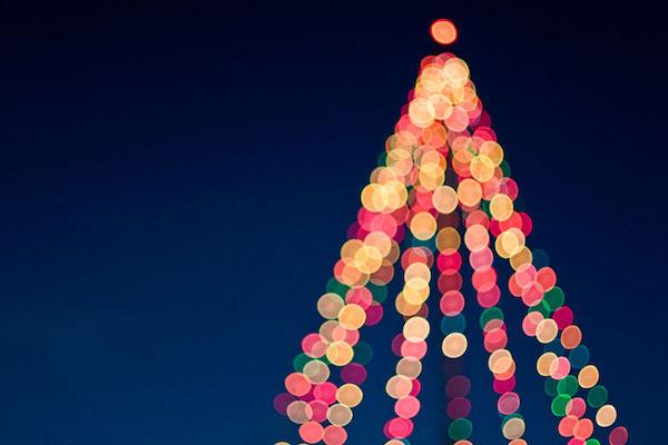 Lanciano: albero di Natale green