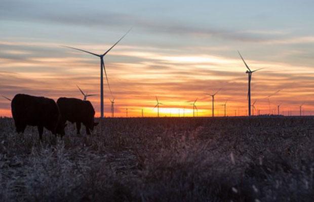 """ENEL, impegno in Usa con """"parchi eolici""""per energia sostenibile"""