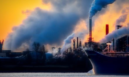 Draghi: un ministero per l'ecologia con Legambiente e WWF