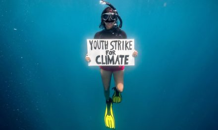 Fridays For Future, la protesta sott'acqua dell'attivista