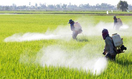 WWF: pesticidi fuorilegge fuoricontrollo
