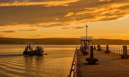 V. Ministra Bellanova, soddisfazione per attenzione a porti Adriatico meridionale
