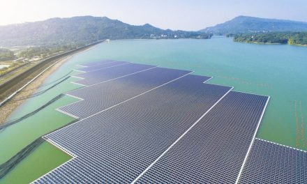 Le regole per creare parchi solari per la biodiversità
