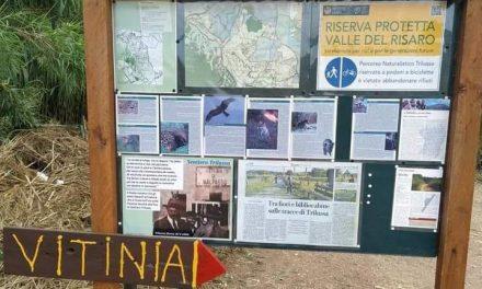 """RomaNatura: riconosciuto il percorso ciclo-pedonale """"Sentiero Trilussa"""""""