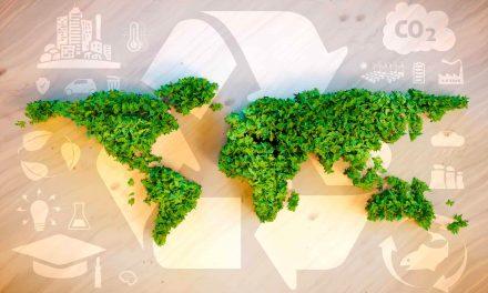 Oristanese: soluzioni 'ecodesign' con scarti mitilicoltura