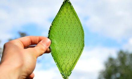 H2: fotosintesi artificiale sempre più stabile