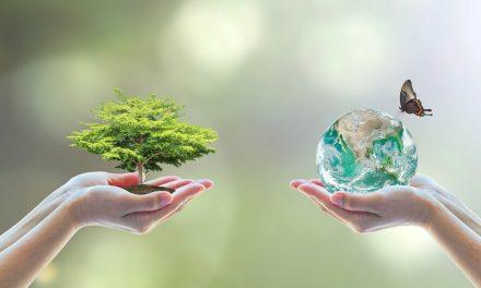 22 maggio: Giornata Mondiale delle Biodiversità