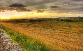 Umbria, bilancio positivo per il Parco tecnologico Agroalimentare