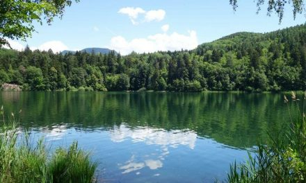 Bolzano: buona qualità acqua, laghi balneabili