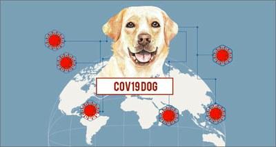Cani detective per scovare il Covid-19