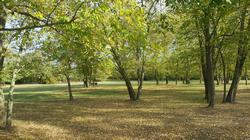 Zone verdi perenni in aree dismesse dell'Emilia-Romagna